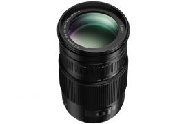 Panasonic Lumix G Vario 100-300mm, f4.0-5.6, OIS, Micro Four Thirds Lens